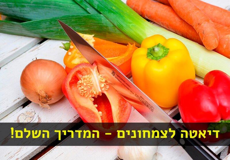 דיאטה צמחונית לצמחונים
